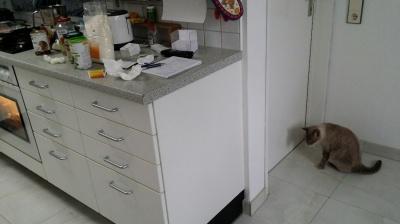 Das Küchenchaos räumst Du aber selber auf! Ich will jetzt hier raus.